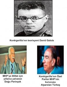 türkeş_perinçek